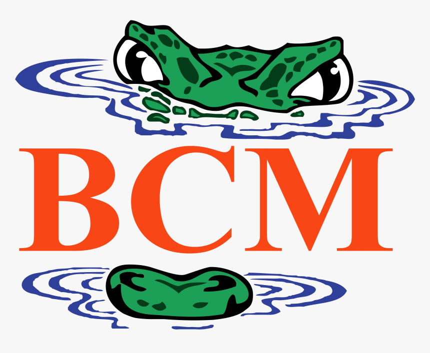 Home Uf Bcm - Dpmi India Com Logo, HD Png Download, Free Download