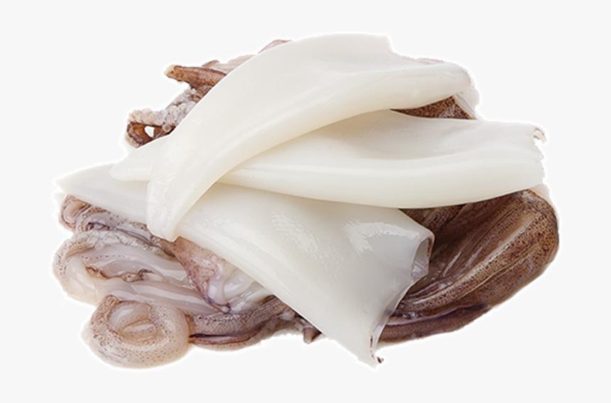 Transparent Squid Png - Grasa Animal Png, Png Download, Free Download