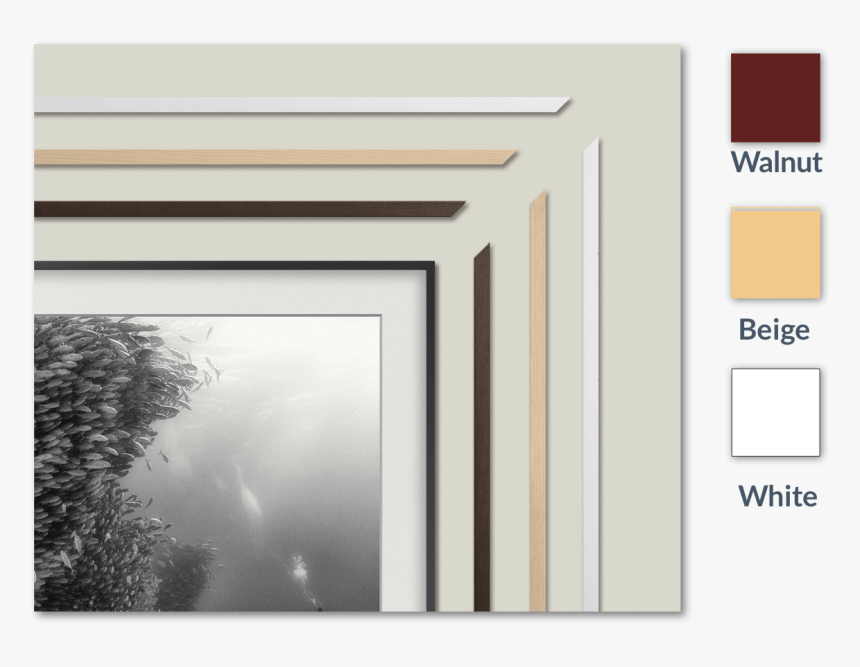 Transparent Tv Frame Png - Frames For Samsung The Frame, Png Download, Free Download