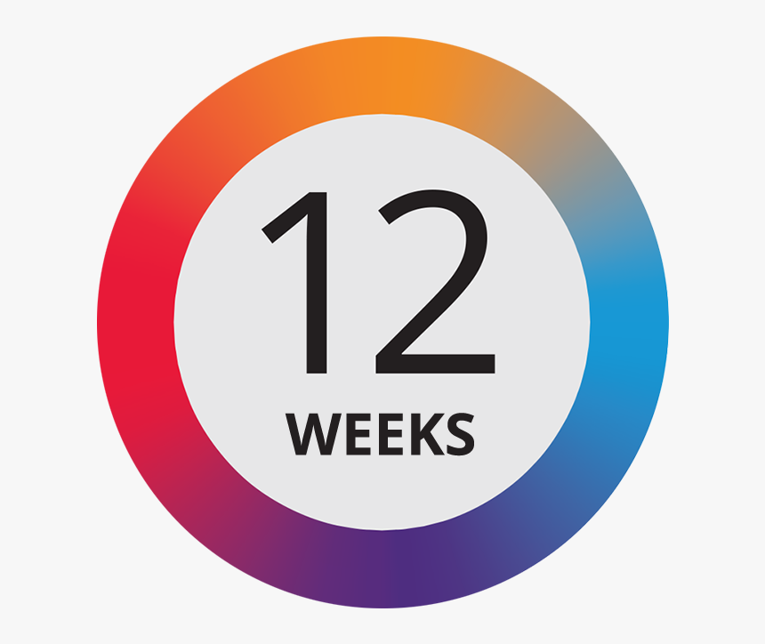 12 Weeks - Circle, HD Png Download, Free Download