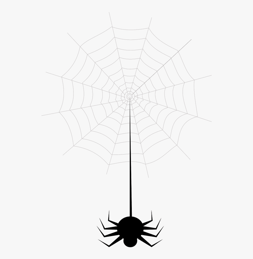Spider Web Clipart - Spider Web, HD Png Download, Free Download