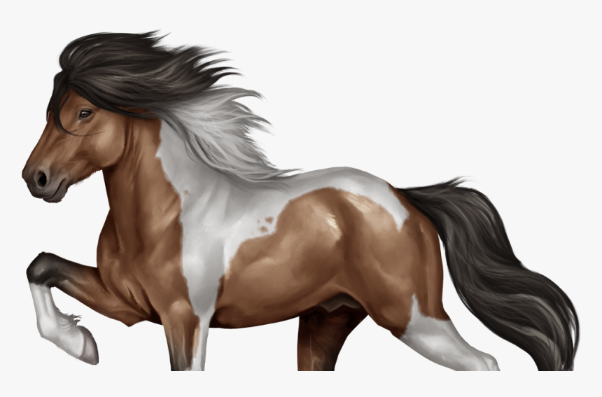 Horse Reality Paarden, HD Png Download, Free Download