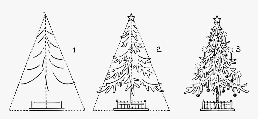 Fir,pine Family,christmas Decoration - Easy Steps To Draw A Fir Tree, HD Png Download, Free Download