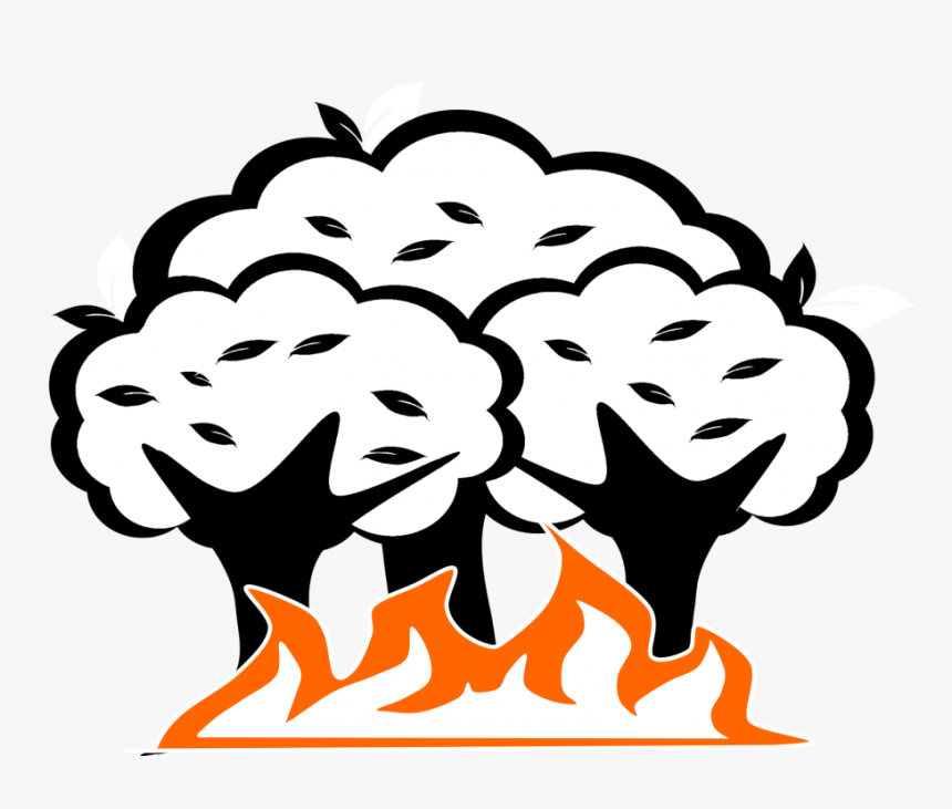 Fire Drawing Outline Realistic Color Video Free Books - Flame Forest Fire Drawing, HD Png Download, Free Download
