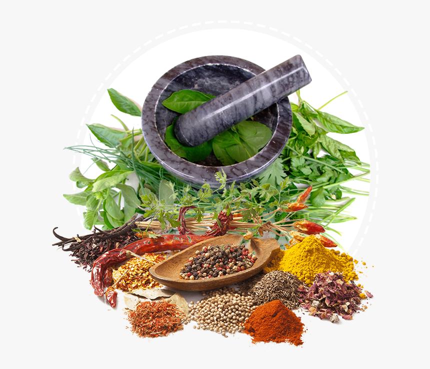 Ayurveda Services Health Medicine Herbalism Herbal Ayurveda Png Transparent Png Kindpng