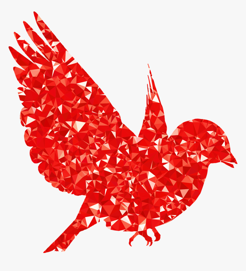 Bird Silhouette, HD Png Download, Free Download