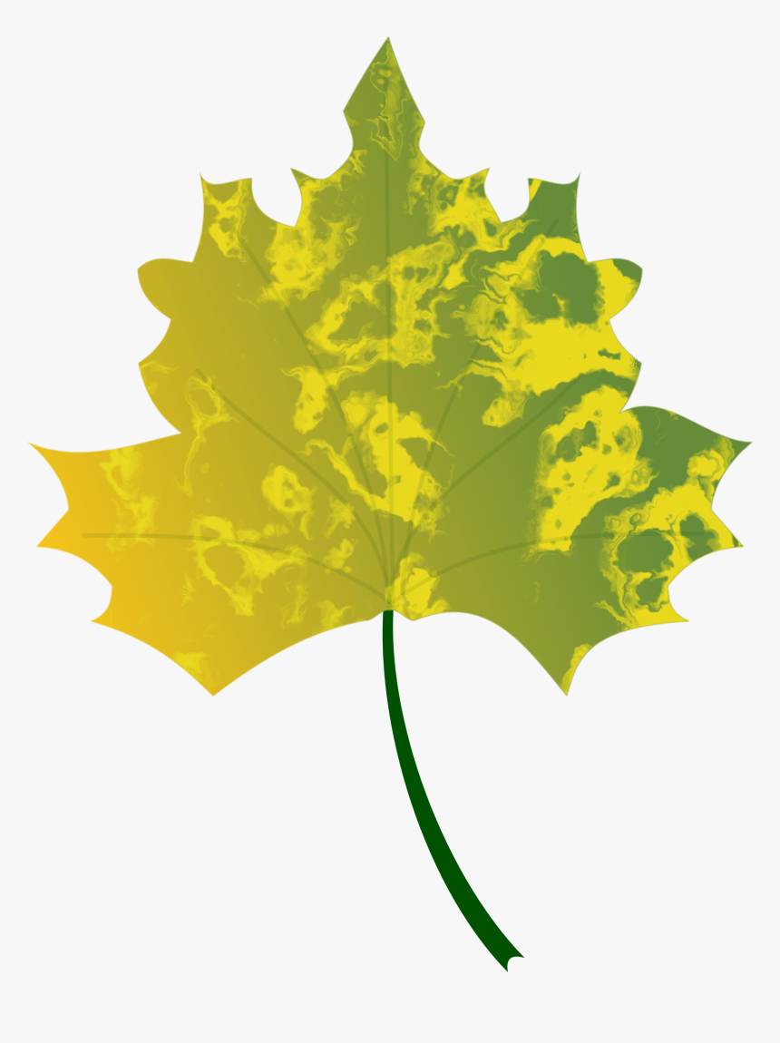 Plant,flora,leaf - Fall Leaves Logo Vector, HD Png Download, Free Download