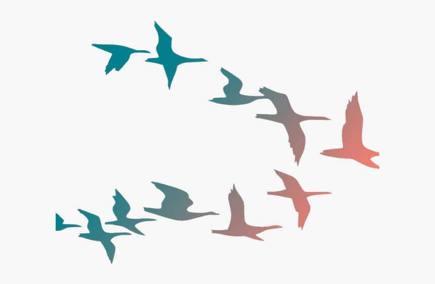 Bird Flying Birds Clipart Flock Of Cartoon Transparent - Colorful Flying Birds Png, Png Download, Free Download