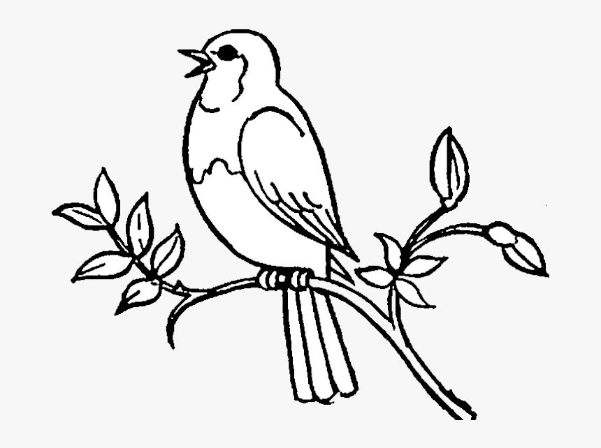 Bird Birds Clipart Black And White Free Best Transparent - Singing Bird Clip Art, HD Png Download, Free Download