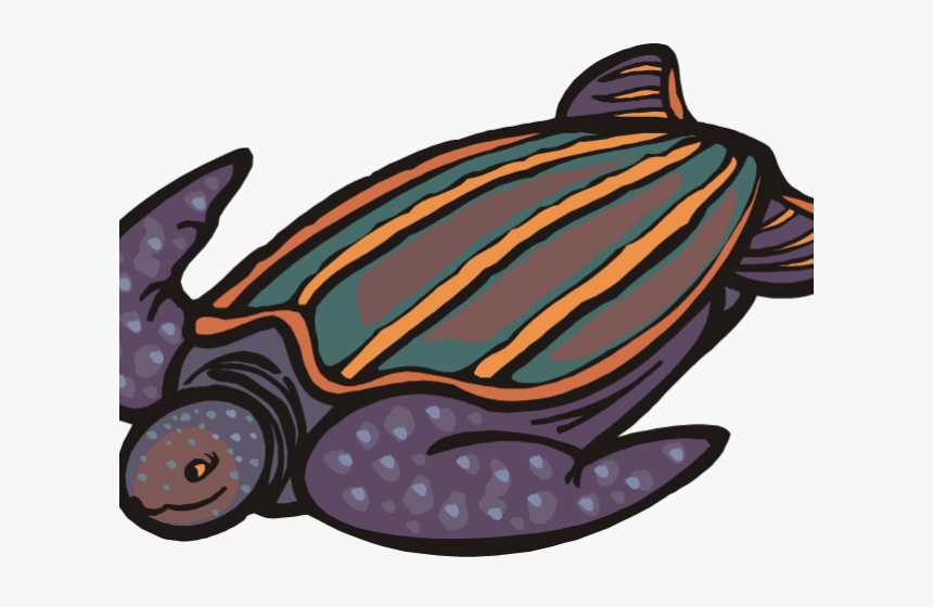 Sea Turtle Clipart Pond Turtle - Cartoon Leatherback Turtle Drawing, HD Png Download, Free Download