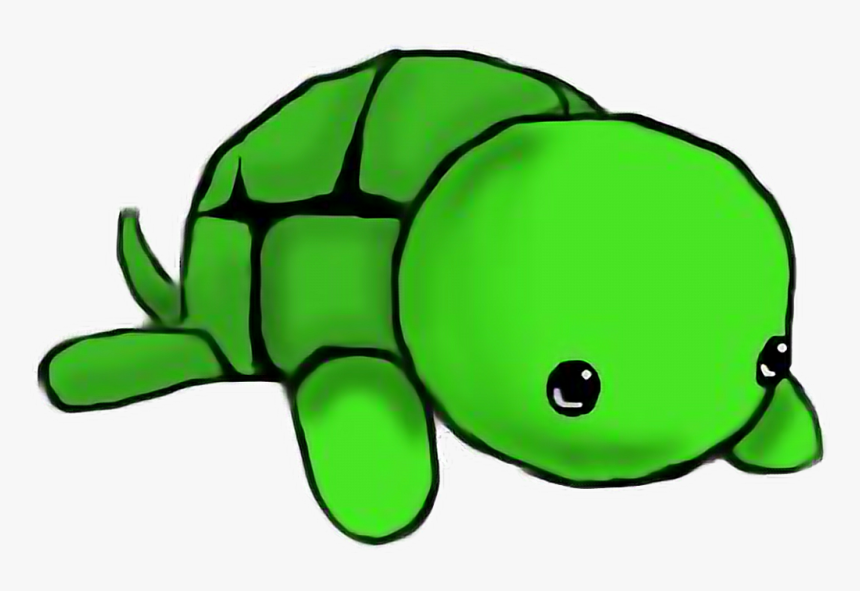Turtle Art Kawii Cute Freetoedit Draw A Baby Turtle Hd Png Download Kindpng