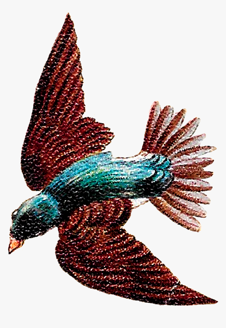 Starling Flying Clipart, HD Png Download, Free Download