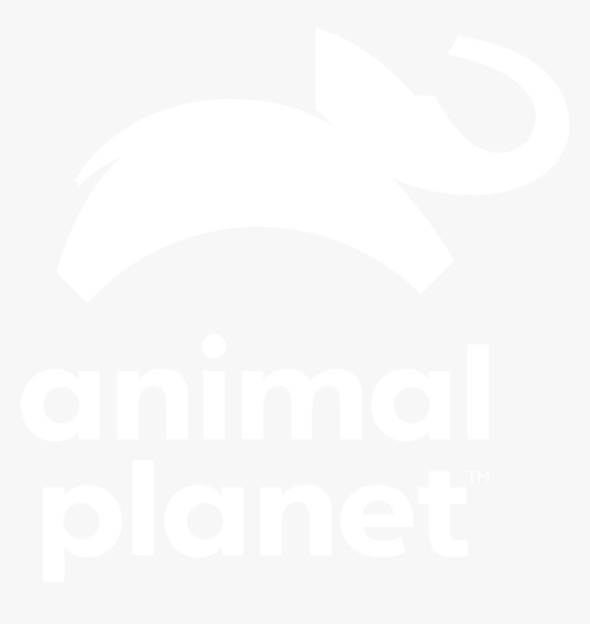 The Incredible Bearded Dragons - Animal Planet Logo White, HD Png Download, Free Download