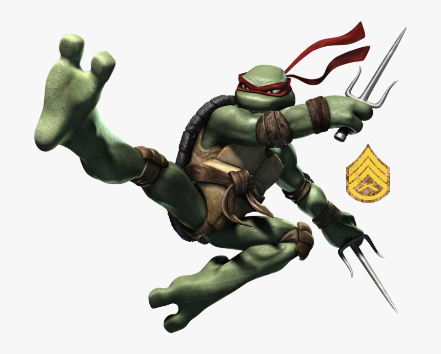 Raphael Leonardo Michelangelo Donatello Teenage Mutant Teenage