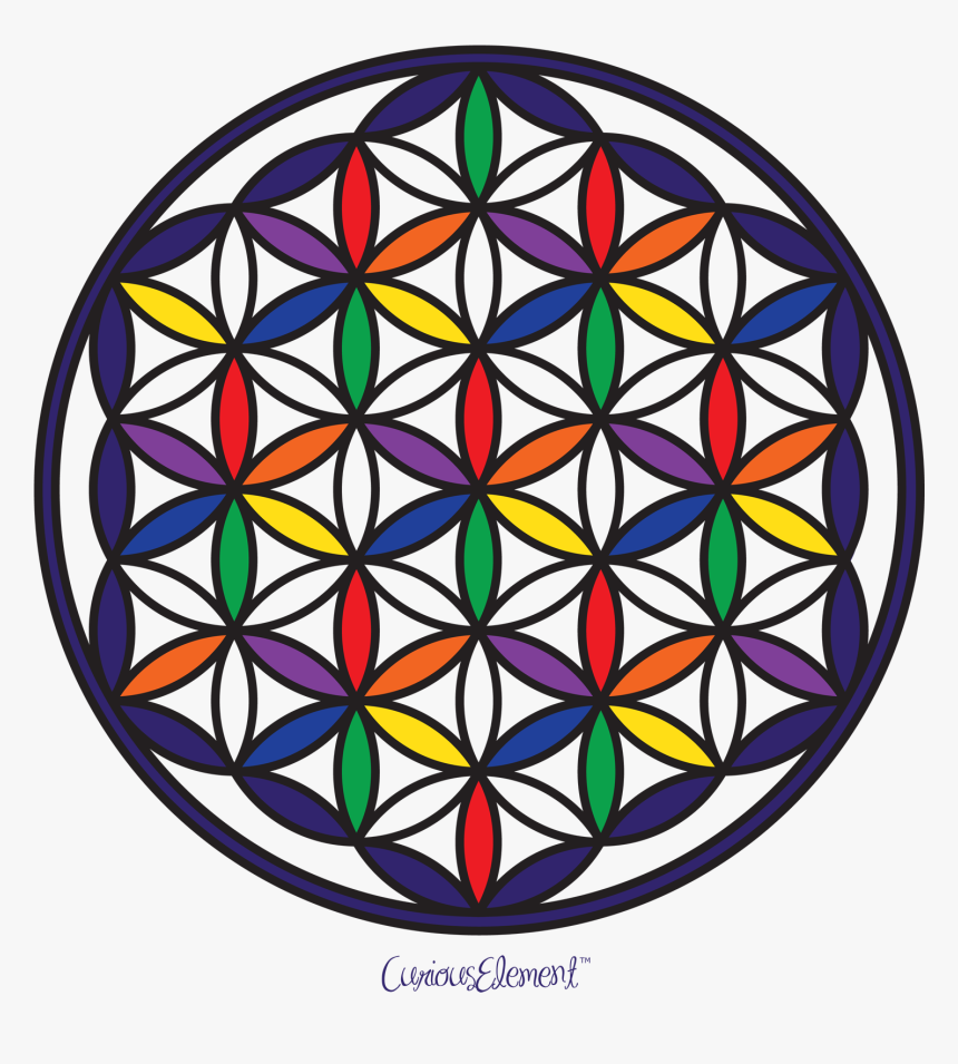 Flower Of Life - Sacred Geometry, HD Png Download, Free Download