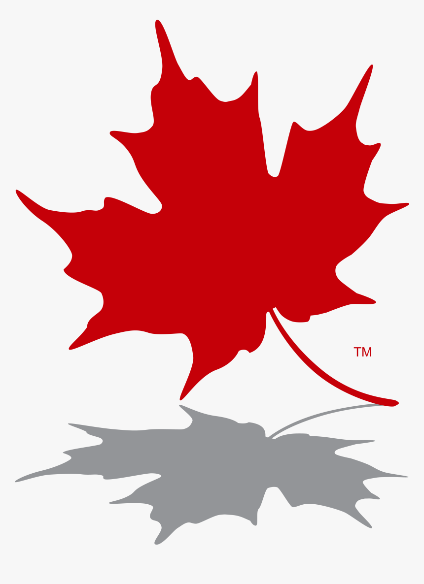 Transpa Canadian Maple Leaf