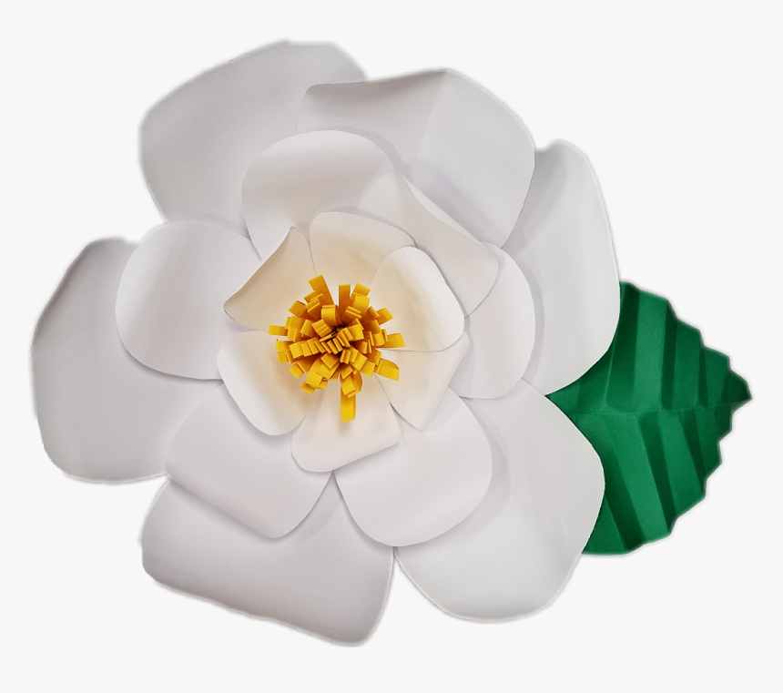 Transparent Paper Flowers Png - Paper White Flower Transparent, Png Download, Free Download