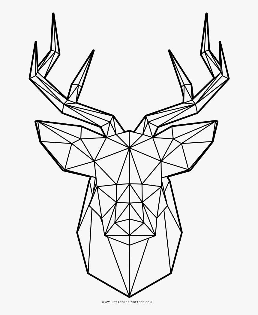 Deed head - Deers Adult Coloring Pages | 1049x860