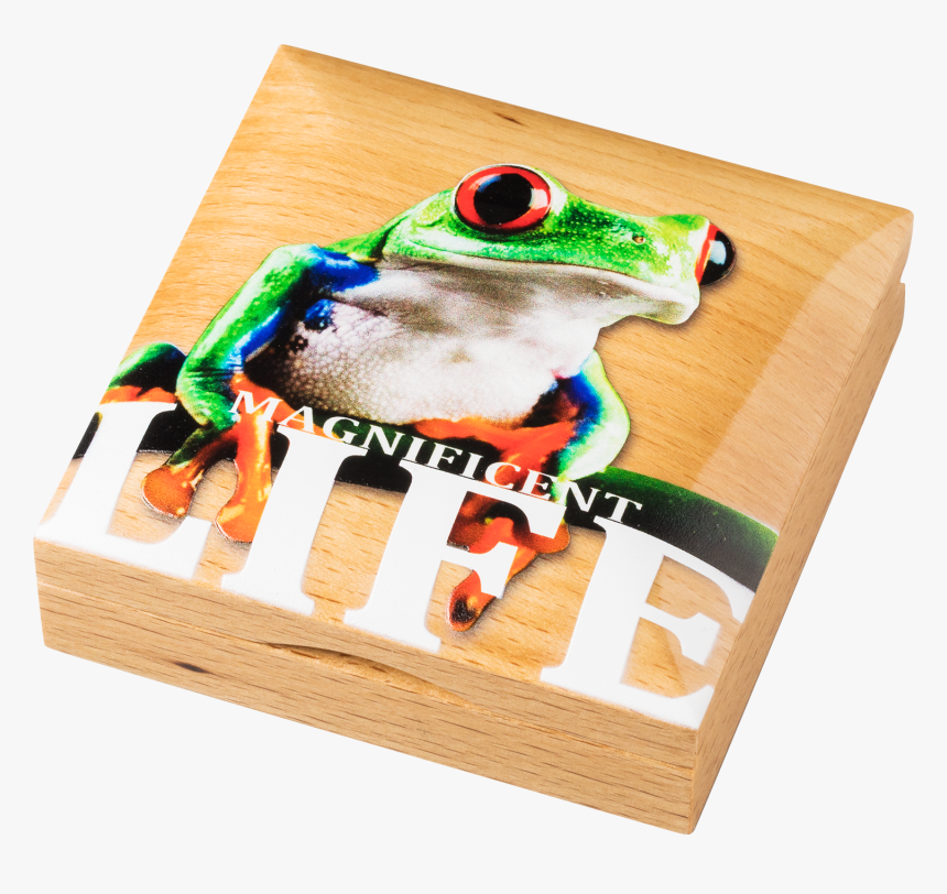 Cook Islands - 2018 - 5 Dollars - Magnificent Life - Green-eyed Tree Frog, HD Png Download, Free Download