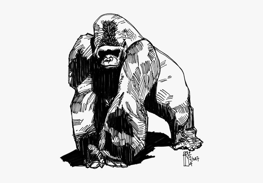 Tattoo Gorilla Western Groovanometry Phaeleh Drawing - Small Gorilla Tattoo, HD Png Download, Free Download