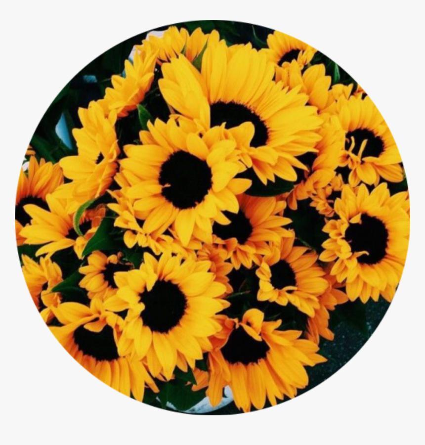 Clip Art Flower Fondo Flor Vintage , Yellow Aesthetic