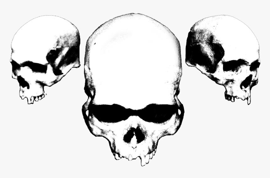 Cerasus Design - Black And White Skulls, HD Png Download, Free Download