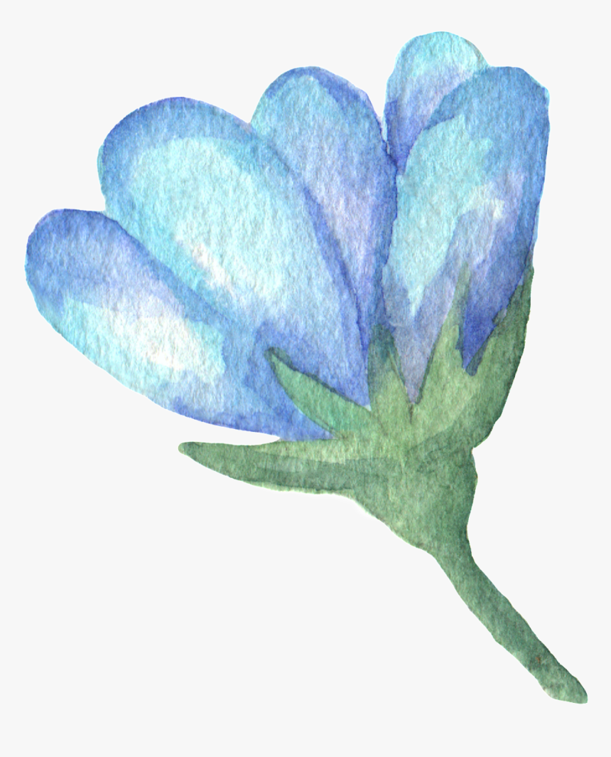 Hand Painted Blue Flower Watercolor Transparent - Illustration, HD Png Download, Free Download
