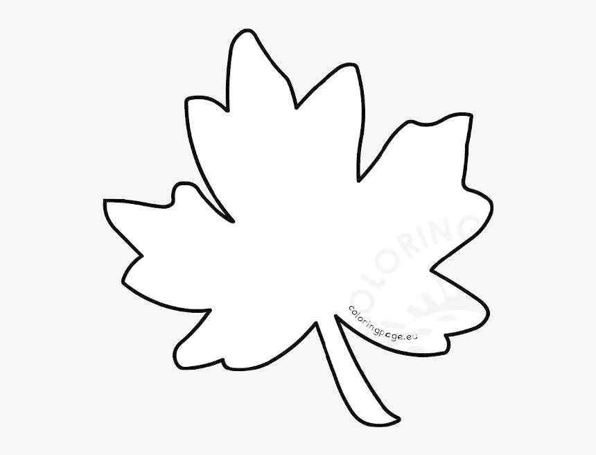 Acorn With Oak Leaf Coloring Pages | Leaf coloring page, Fruit coloring  pages, Leaf coloring
