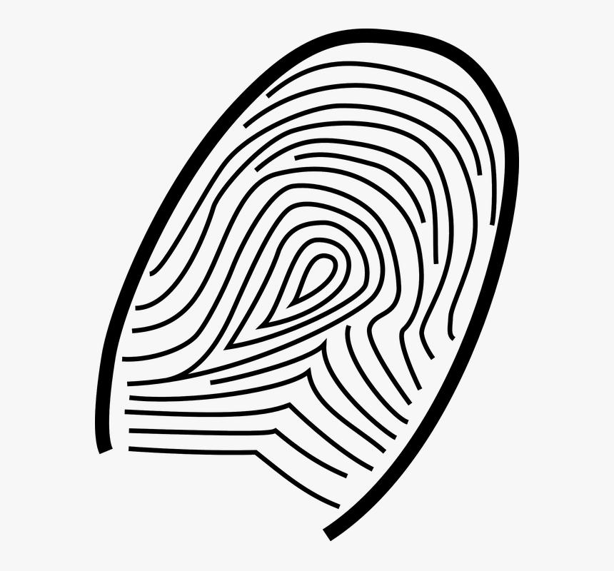 Thumb Fingerprint Print Thumbprint Identity Drawings Of Forensic Science Hd Png Download Kindpng