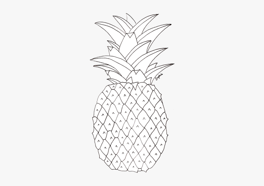 White Pineapple Transparent Background, HD Png Download, Free Download