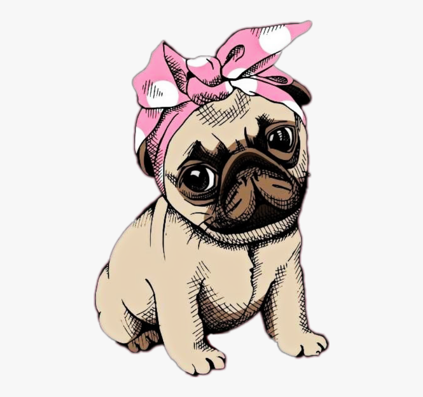 #stikers #pug #png #perro #dog