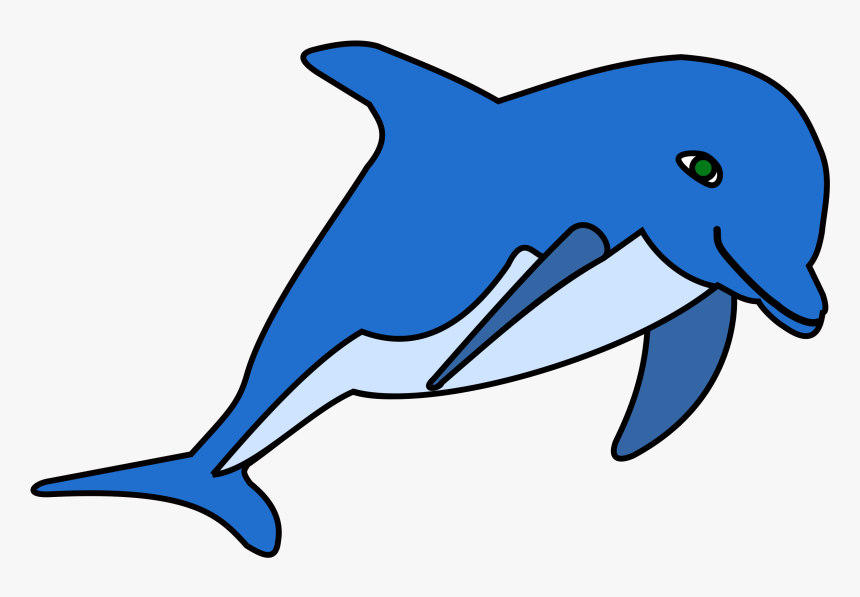 Common Bottlenose Dolphin Download Document Cetacea - Cliparts Dolphin, HD Png Download, Free Download