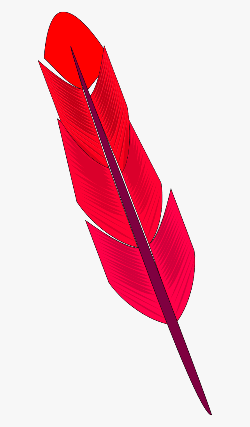 Red Feather - Colorfulness, HD Png Download, Free Download
