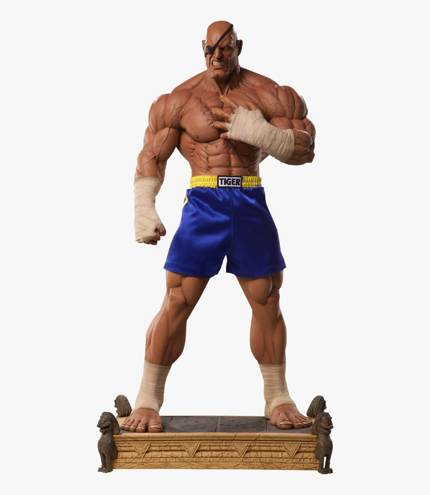 Street Fighter Sagat Action Figures, HD Png Download, Free Download