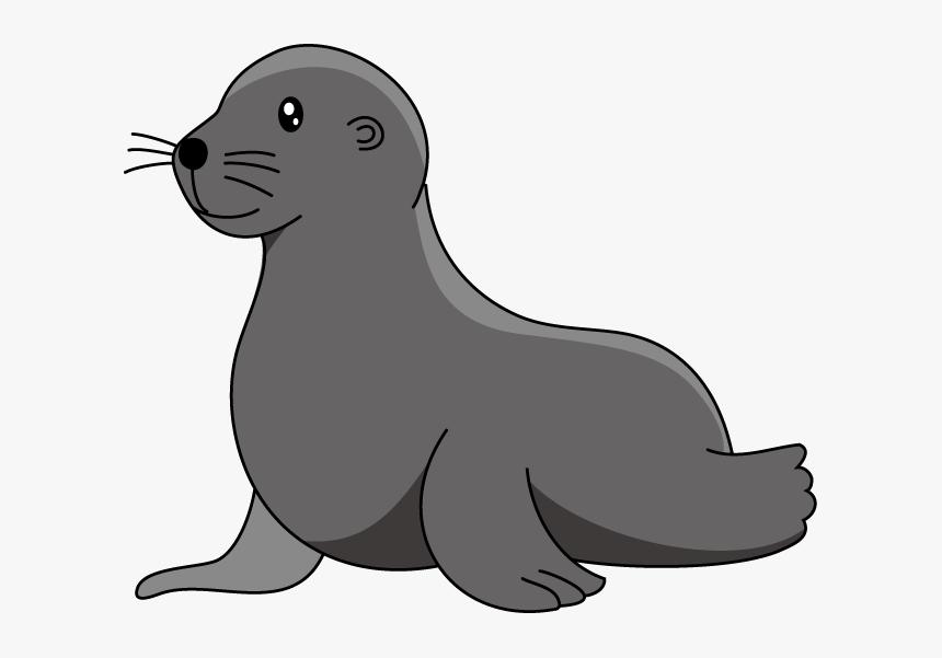 Baby Sea Lion Elephant Seal Clip Art - Clip Art Sea Lion, HD Png ...