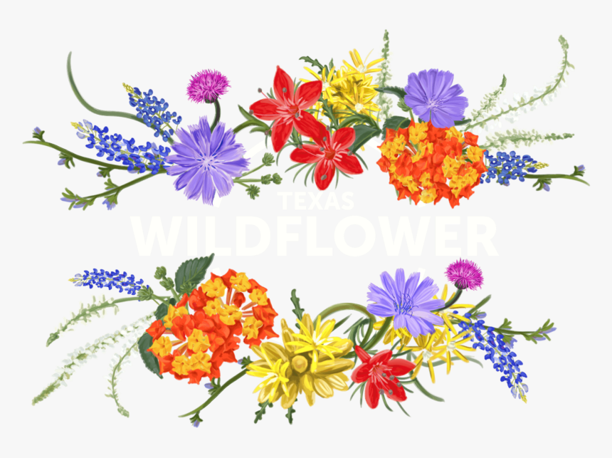 Texas Wildflower Clip Art, HD Png Download, Free Download