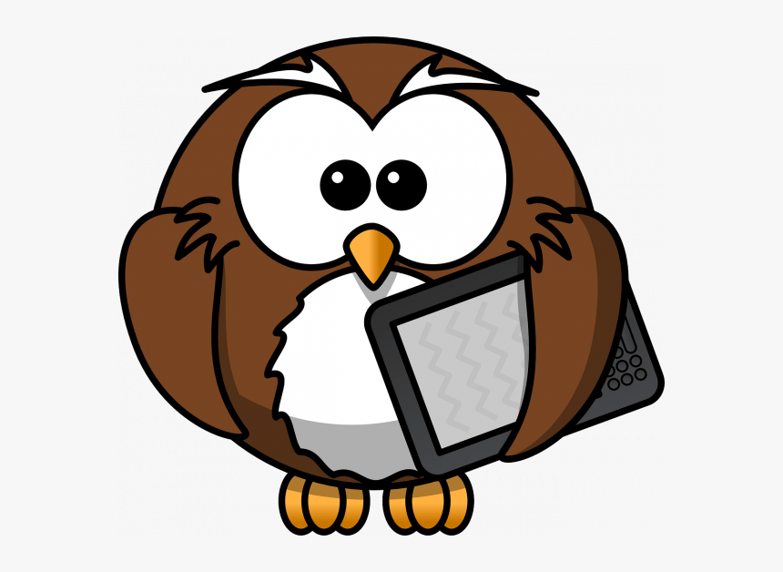 Cartoon Owl Transparent Background, HD Png Download, Free Download