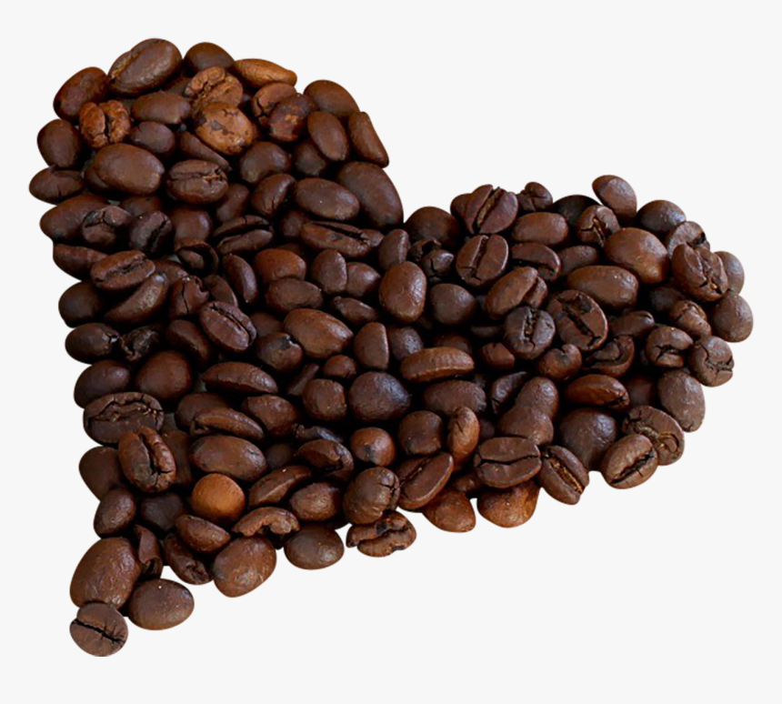 Single Coffee Bean Png - Png Clipart Coffee Beans Png, Transparent Png, Free Download