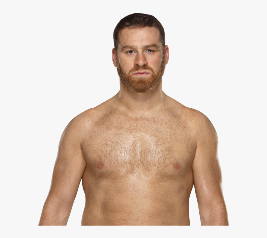 Wwe Wiki - Sami Zayn Intercontinental Champion, HD Png Download, Free Download