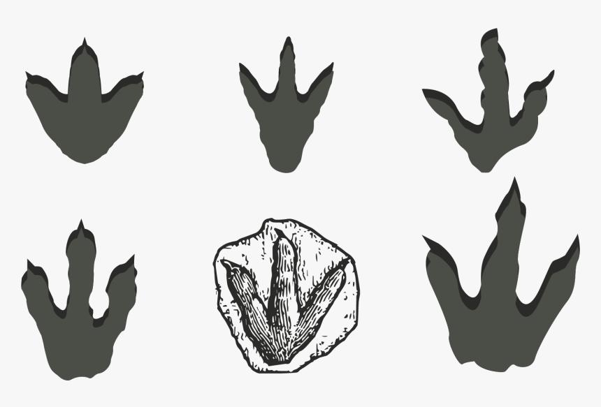 Dinosaur Footprints Reservation Stegosaurus - Dinosaur Footprint Clipart, HD Png Download, Free Download