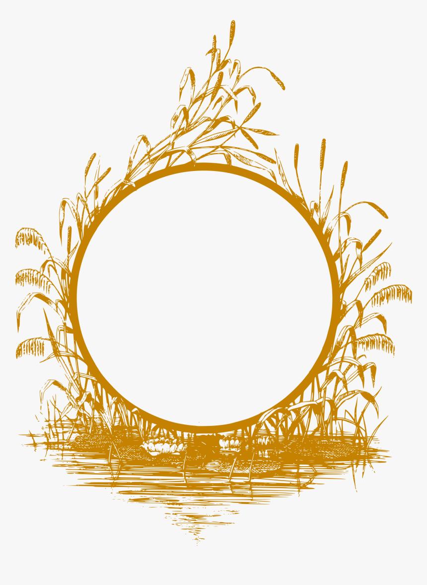 Golden Frame Png Clipart , Png Download - Gold Frame Design Png, Transparent Png, Free Download