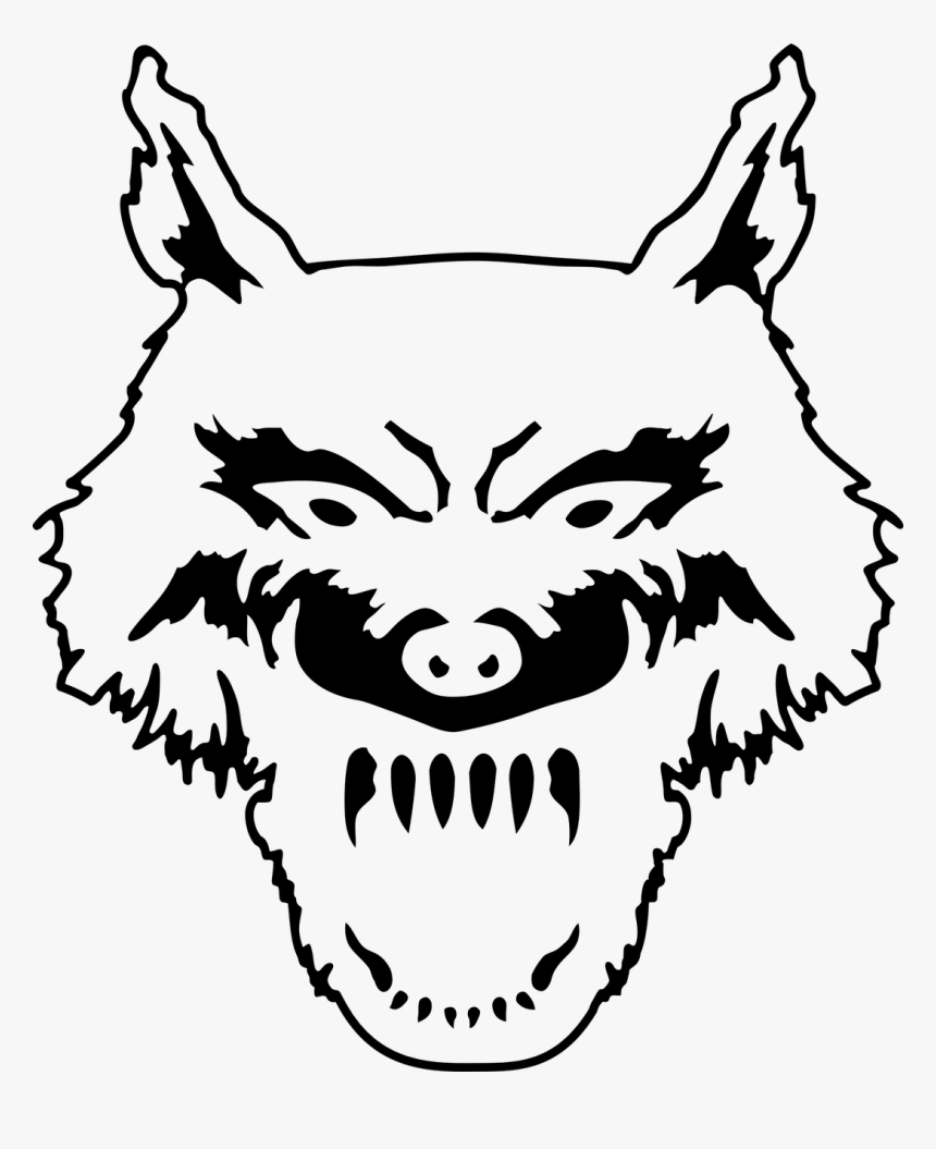 Wolf The Head The Animal Free Picture Gambar Sketsa