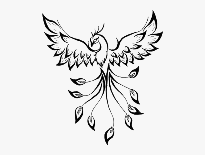 Tattoo Phoenix Flash Drawing Image - Outline Of A Phoenix, HD Png Download, Free Download