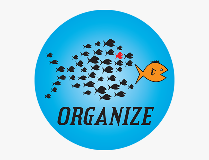 Organize Button - Circle, HD Png Download, Free Download